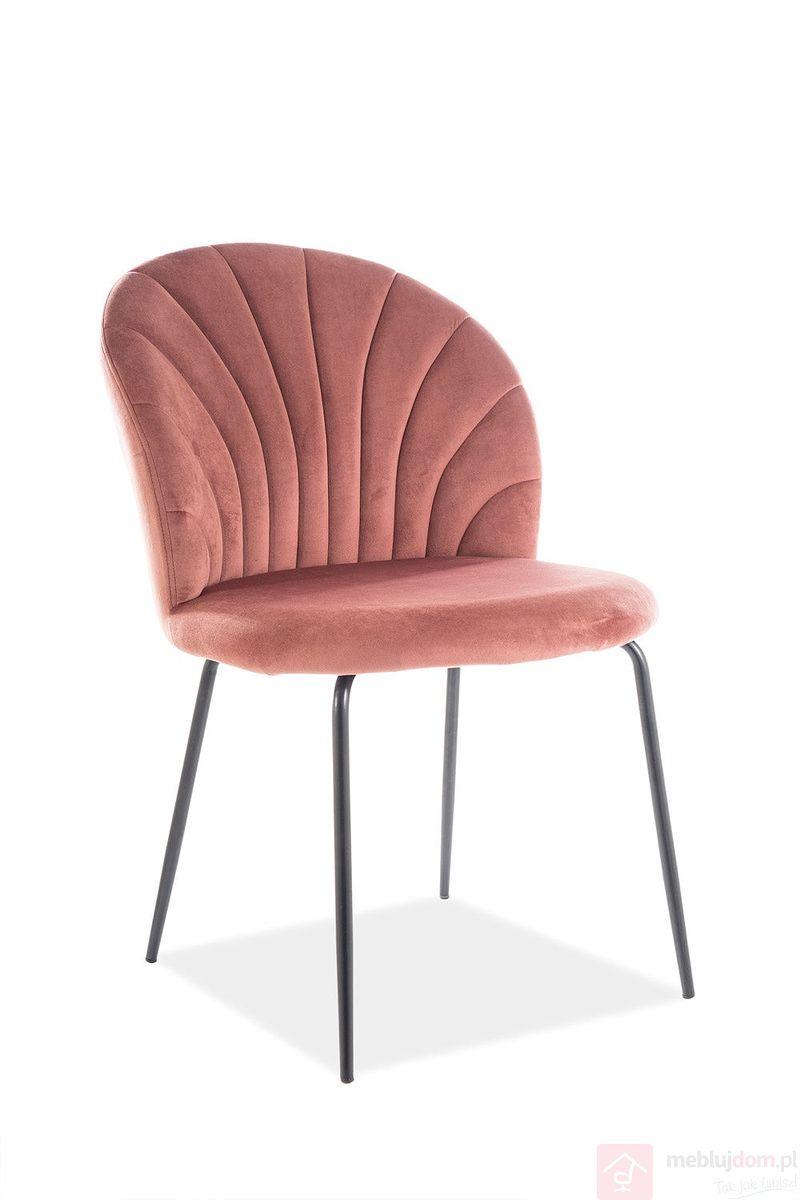 Krzesło LOLA VELVET Signal antyczny róż bluvel 52